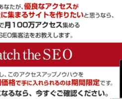 Catch the SEO 特典